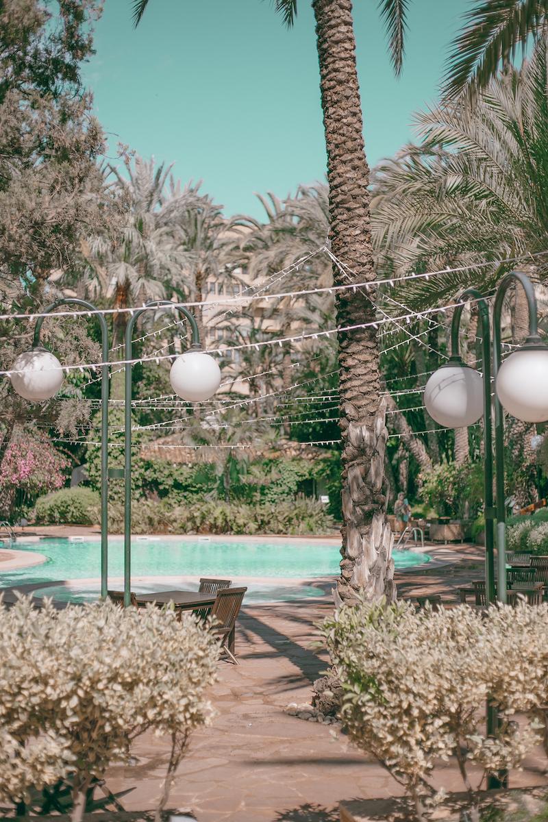 Hoteles_con_piscina_y_palmeras